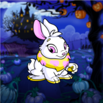 Premium Collectible: Enchanted Pumpkin Patch Background