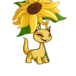 Premium Collectible: Giant Sunflower