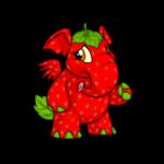 strawberry elephante