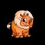 orange tonu