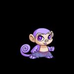 Comfy Purple Culottes