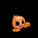 orange jubjub