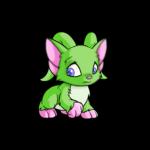 green acara