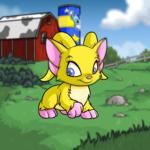Kau Kau Farms Background