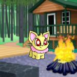 Campground Cabin Background