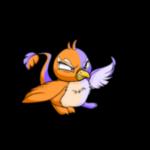 split pteri