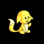 yellow kacheek