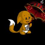 Ornate Pirate Parasol