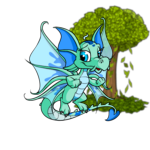 Wish for NC Tree
