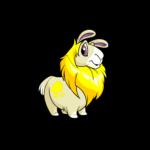 yellow gnorbu