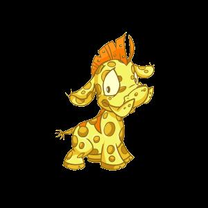 Male Sponge Moehog