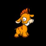 orange moehog
