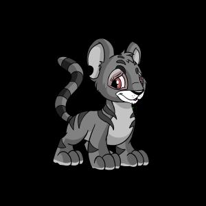 Female Grey Kougra