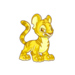 gold kougra