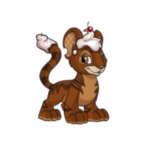 chocolate kougra