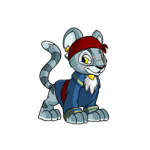 pirate kougra
