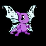 Delicate Cobweb Wings