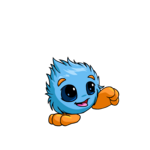 blue jubjub