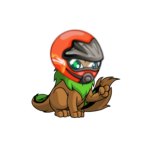 Xweetok Racer Helmet
