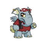 pirate elephante