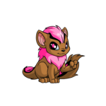 pink xweetok