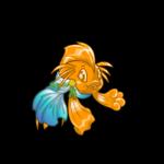 Koi Ocean Lord Toga