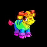rainbow kau