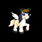 Shenkuu Warrior Princess Wig