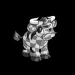 checkered kau