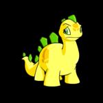 yellow chomby