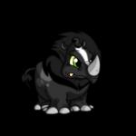 skunk tonu