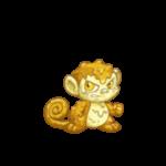 custard mynci