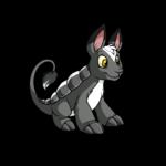 skunk bori