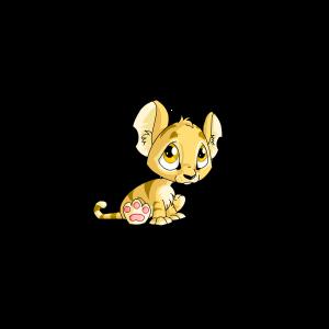 Unconverted Baby Kougra