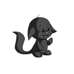 shadow kacheek