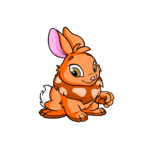 orange cybunny