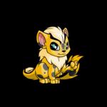spotted xweetok