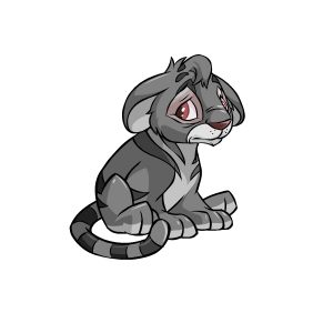 Unconverted Grey Kougra