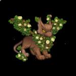 woodland eyrie