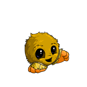 Male Coconut Jubjub