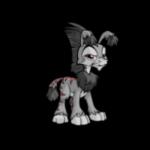 grey ogrin