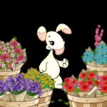Flower Basket Array Foreground