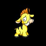 yellow moehog