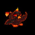 magma pteri