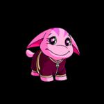 Poogle Running Suit