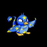 starry pteri