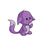 purple kacheek