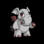 grey elephante