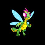disco buzz