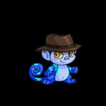 Mynci Explorer Hat